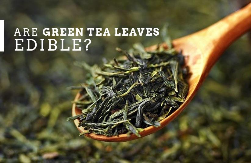 Are Green Tea Leaves Edible