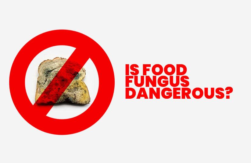 Is Food Fungus Dangerous